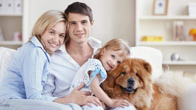 Wills & Trusts dog-young-family Direct Wills Corby